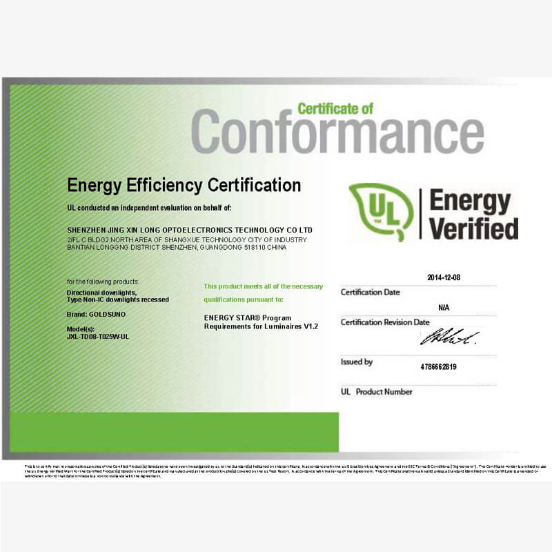 8 Inch 25W Downlight Energy Star Certificate